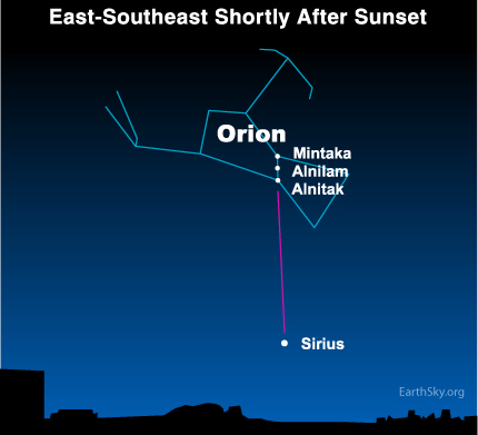 Not sure which star is Sirius?  The three Belt stars of Orion - three stars in a short, straight row - always point to Sirius.