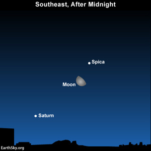 After Jupiter sets, look to the  southeast after midnight on Saturday, February 2, for the waning gibbous moon, Spica and Saturn.