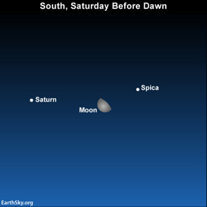 If you're an early bird, look into the southern sky before dawn on February 2 for the moon, Spica and Saturn