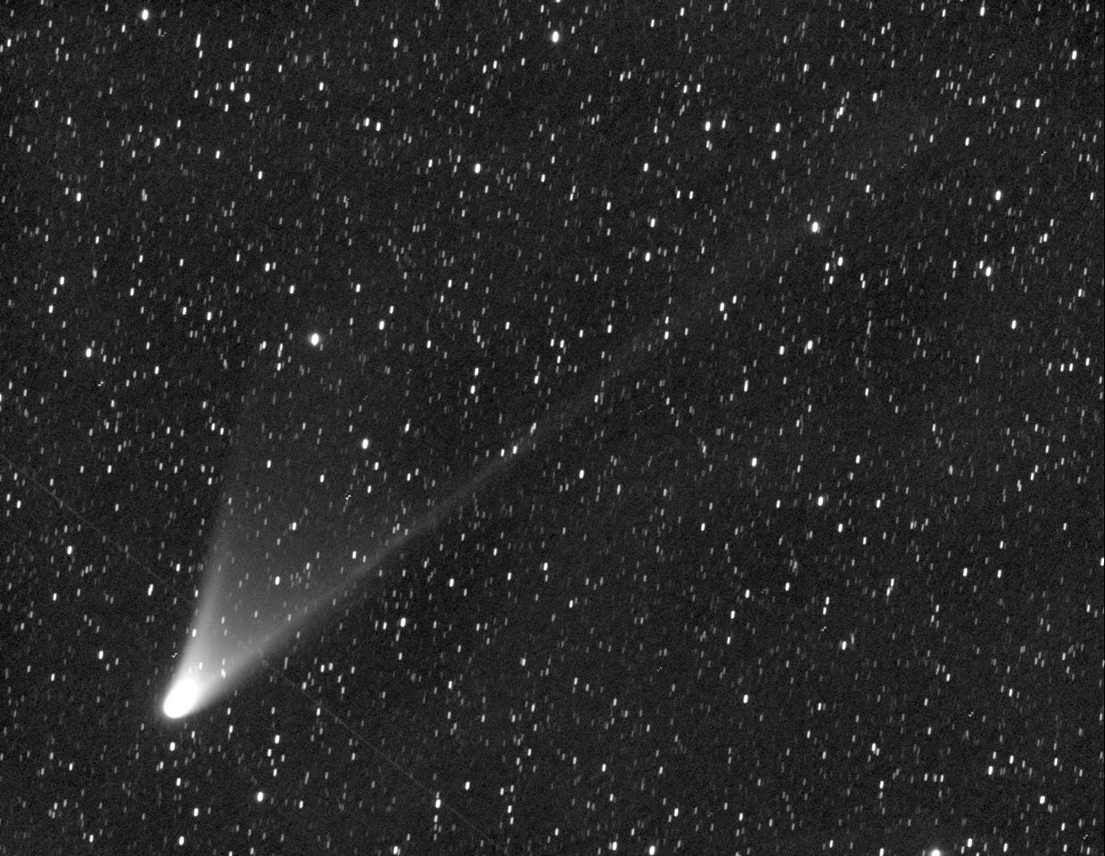 CometPANSTARRS_by_T.Lovejoy-Australia_HR.jpeg