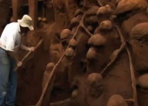 Video still from Ants!  Nature's Secret Power