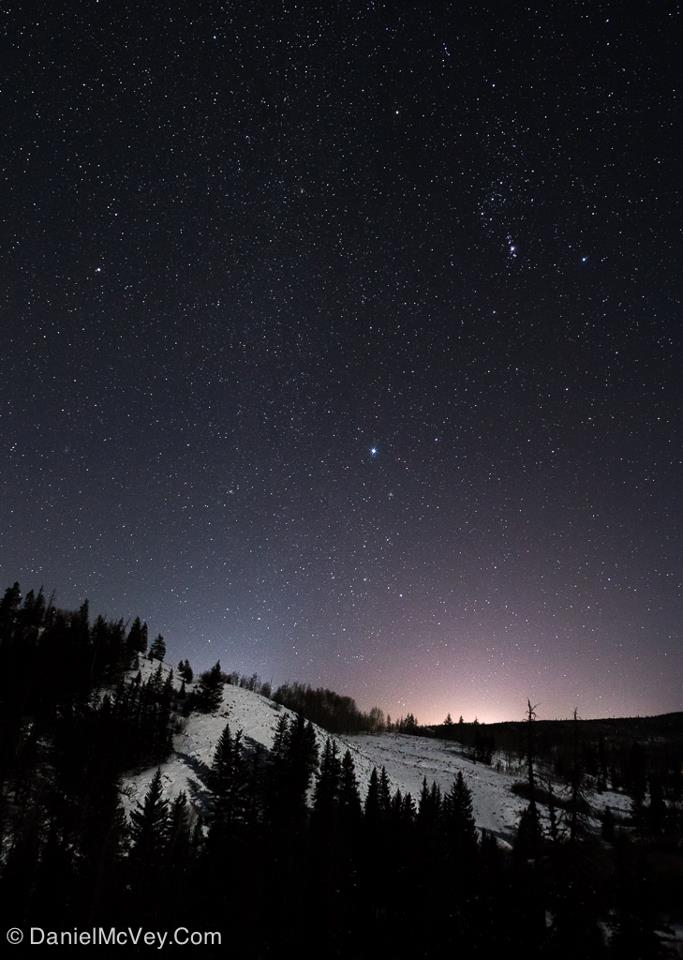 Procyon is the Little Dog Star   Brightest Stars   EarthSky