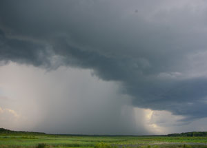 rain_wikimedia_300