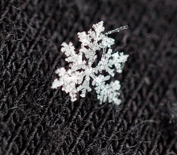 irregular flake on gray knit cloth.
