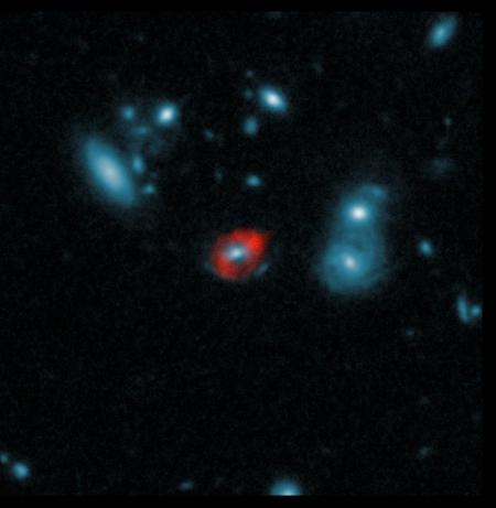 One of the SPT-discovered sources observed by ALMA and the Hubble Space Telescope (HST). The massive central galaxy (in blue, seen by HST) bends the light from a more distant galaxy that's bright in submillimeter wavelengths, forming a ring-like image of the background galaxy, which is observed by ALMA (red). Credit: ALMA (ESO/NRAO/NAOJ), J. Vieira et al.