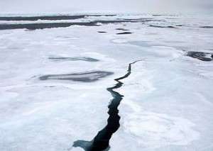 Arctic sea ice, with a crack.  Image via NSIDC
