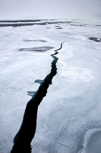 Arctic sea ice maximum for 2013 was March 15. The maximum ice extent marks the beginning of the melt season for Arctic sea ice. Long cracks in the ice begin to open up and the ice cover starts to melt as sunlight brings warmth to the Arctic. Image via Angelika Renner/NSIDC.