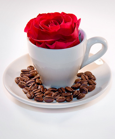 Flowers and caffeine, a winning combination. Image: Brett Monroe.