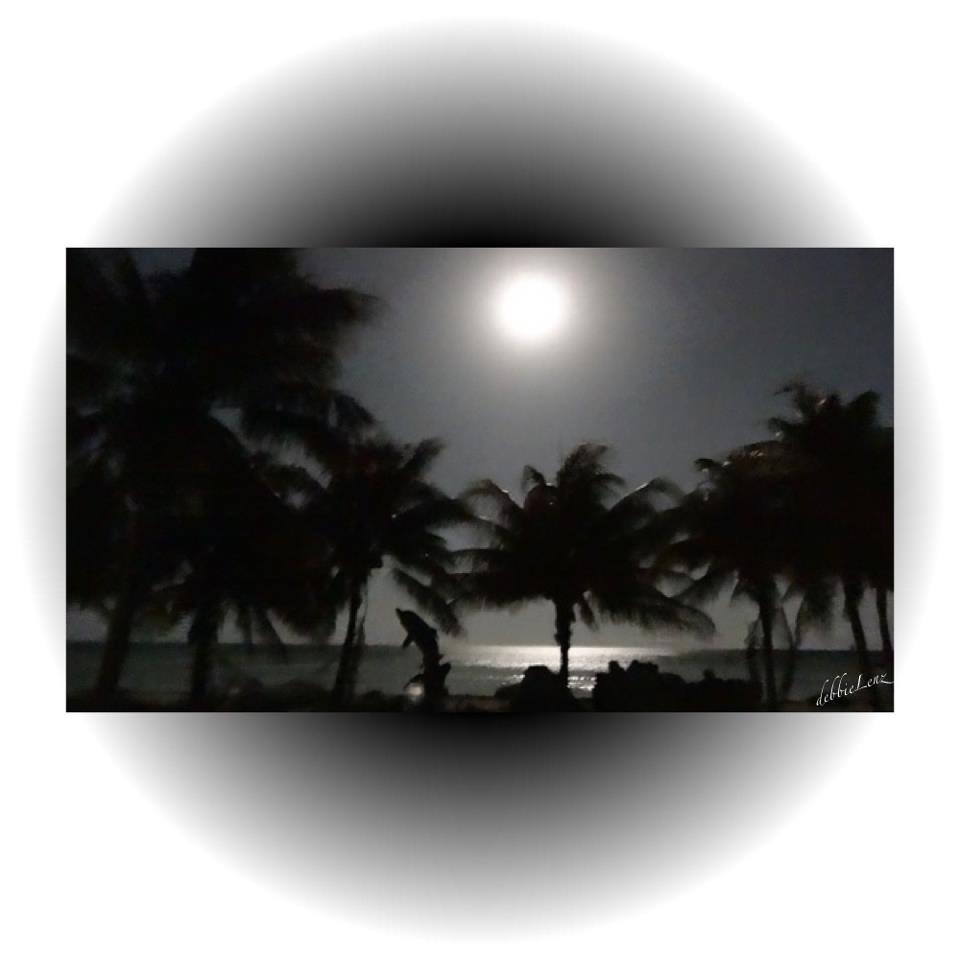 Photo credit: Debbie Watson. Her description: 'Last night's full moon over Islamorada Florida Keys.'