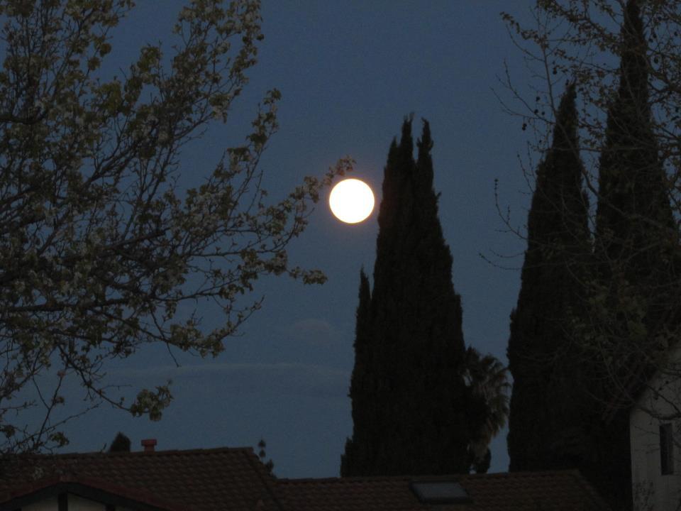'San Jose, California @ 8 pm' by Luis Alberto