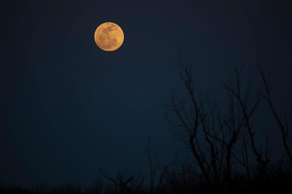 Full moon in MIssouri. Photo credit: William Aronson