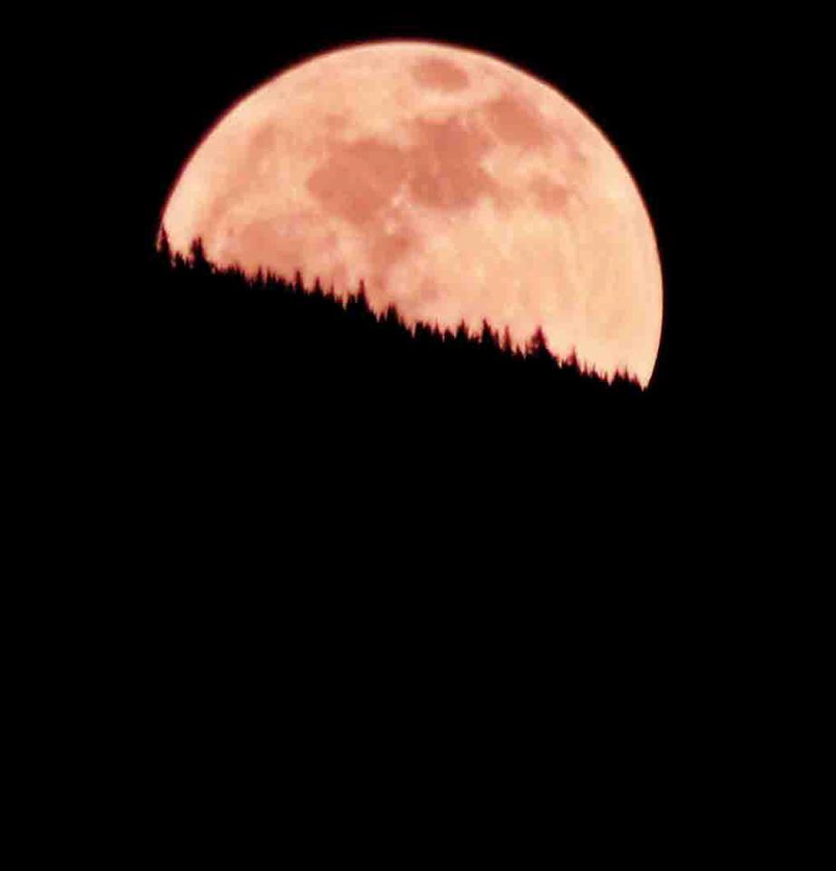 Photo credit: Peter Van Burun Bunswork. He wrote, 'Last night's full moon creeping over Columbia Mountain here in Columbia Falls Montana!'