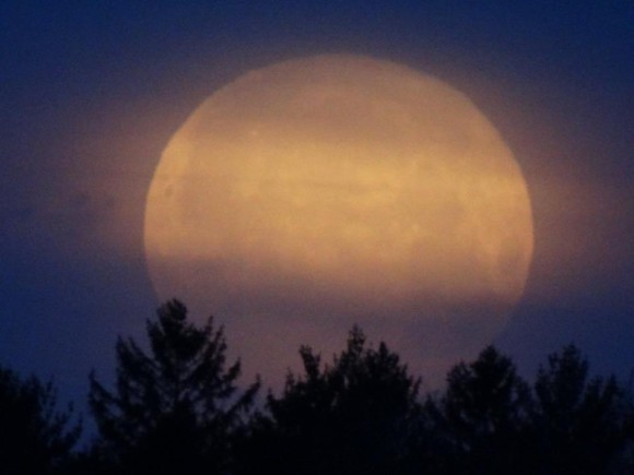 Full moon setting in northwest Indiana. Photo credit:  Carl Galloway