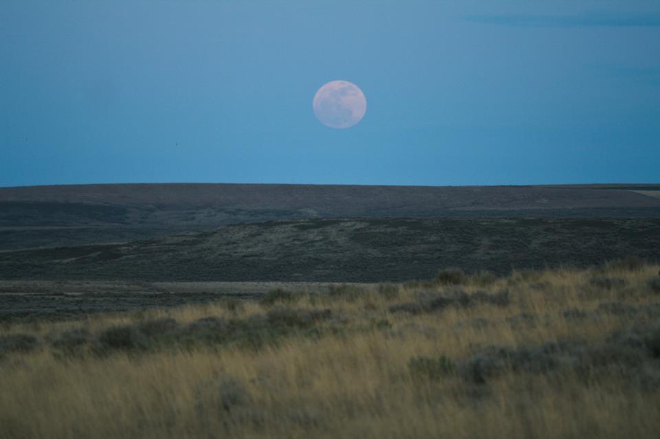 'Full Moon in Eastern Washington,' by Susan Geis Jenson