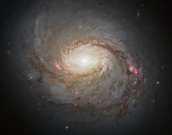 Messier 77Messier 77