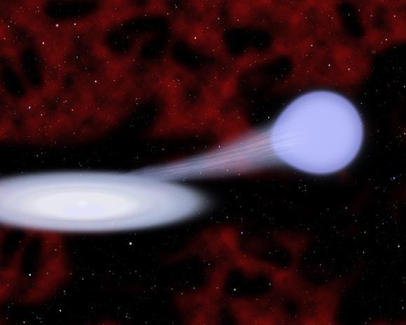 New supernova Iax