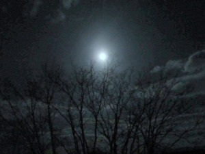 Waning gibbous moon on March 27, 2013