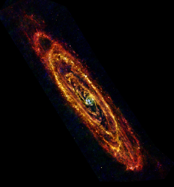Cool Andromeda. Andromeda, also known as M31, is the nearest major galaxy to our own Milky Way at a distance of 2.5 million light-years. Sensitive to the far-infrared light from cool dust mixed in with the gas, Herschel seeks out clouds of gas where stars are born. The new image reveals some of the very coldest dust in the galaxy -- only a few tens of degrees above absolute zero -- colored red in this image. By comparison, warmer regions such as the densely populated central bulge, home to older stars, take on a blue appearance. Caption and image via JPL.
