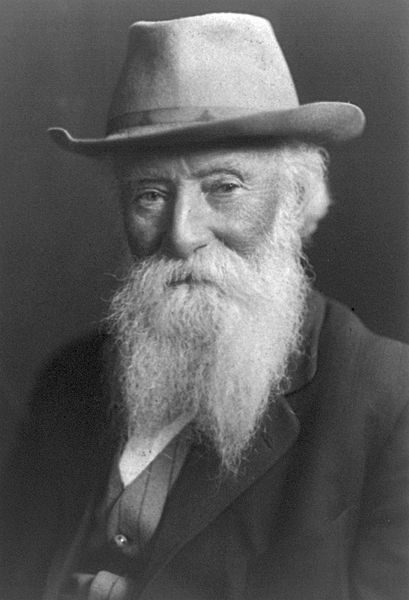 Old man with forked white beard and hat.