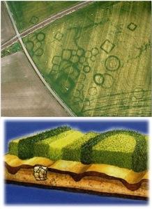 Vegetation marks