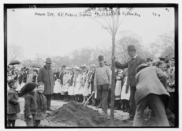Men planting a tree with girls in white lined up in background some year around 1900.