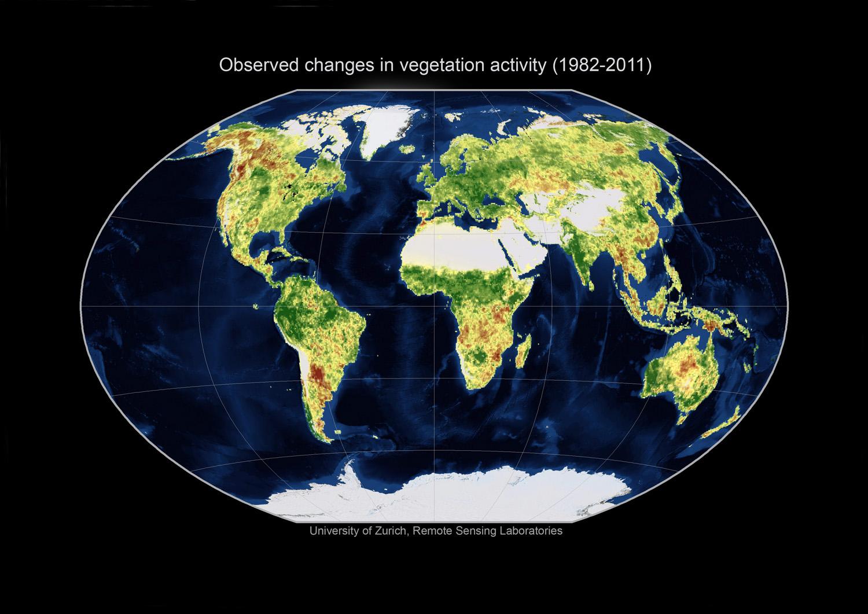 Changes in vegetation