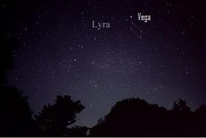 The brilliant star Vega nearly coincides with the radiant point of April's Lyrid meteor shower. Image credit: AlltheSky