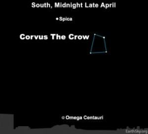 Use the star Spica as your guide to the great Omega star cluster
