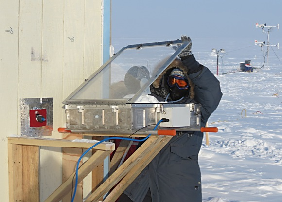 Sunlit snow triggers atmospheric cleaning and ozone depletion in the Arctic