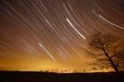 Star trails, by Ken Christison