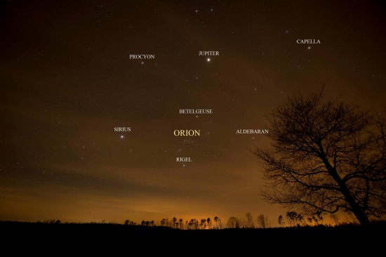 Dark brown sky with constellation Orion and seven stars labeled.
