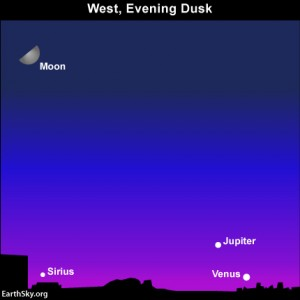 You'll have plenty of time to catch the moon and Regulus after nightfall. But you'll have to catch the planets Venus and Mercury as dusk ebbs into darkness.