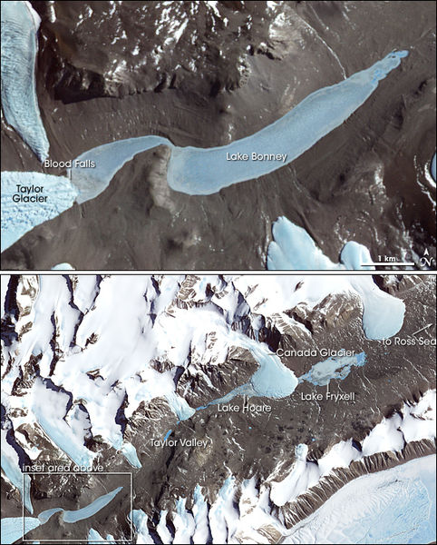 False-color image of Taylor Glacier, flowing into Lake Bonney in Antarctica.  Blood Falls is on the left side of both photos.  Image acquired by NASA's Terra satellite on November 29, 2000.
