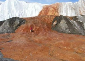 Blood Falls in Antarctica via ScienceNow in 2009