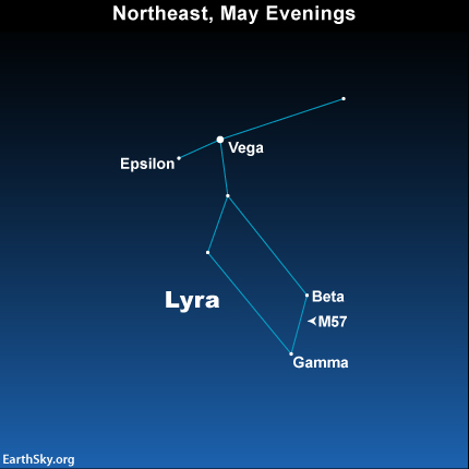 Star chart of constellation Lyra with stars and M57 labeled.