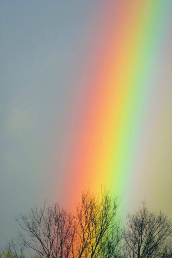 Tonia Coleman-Klein captured this rainbow on March 29, 2014.  She said it's the brightest one she ever saw.