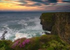 Sunset, cliffs and blooming flowers in Kerry, Ireland