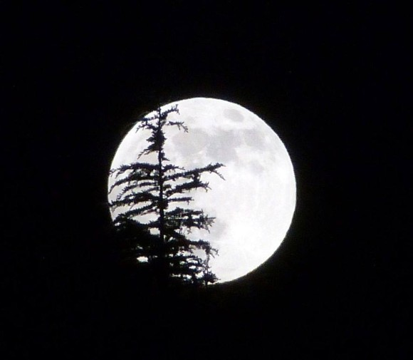 Supermoon from northern Italy from our friend Eva Young. May 24, 2013.