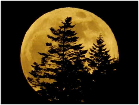 Rising supermoon on May 24, 2013 as seen in Elk, California by our friend Mendocinosportplus.