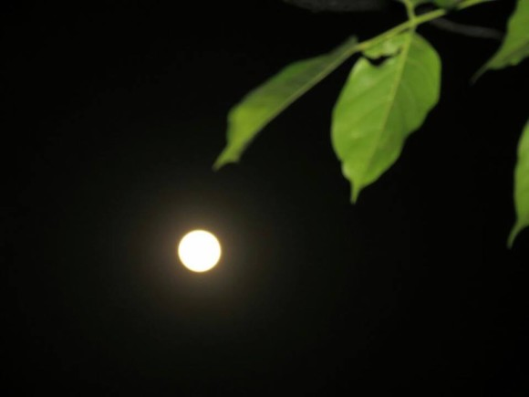 The May 24-25, 2013 supermoon from Hyderabad, India. Photo credit: Kausor Khan