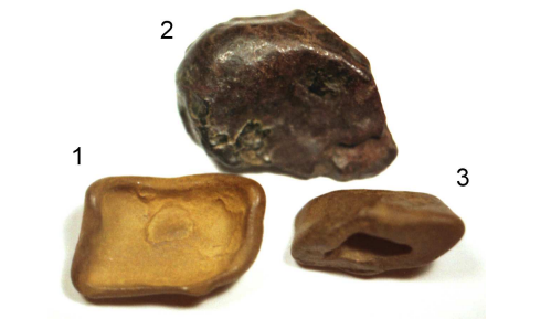 Possible meteorite fragments from 1908 Tunguska event, from a paper by Andrei E. Zlobin of the Russian Academy of Sciences.