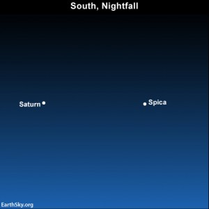 At mid-northern latitudes, the star Spica and the planet Saturn appear in the southern sky at dusk or nightfall in June 2013. From mid-southern latitudes in the Southern Hemisphere, Spica and Saturn appear high overhead or high in the northern sky on June 2013 evenings.