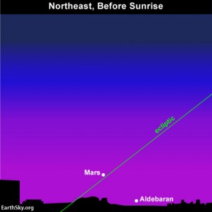 Every year in the month of June, the star Aldebaran hides in the glare of morning twilight.