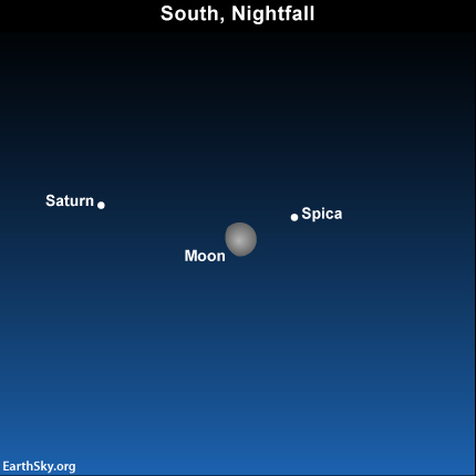 Moon Saturn and Spica Star (page 4) - Pics about space