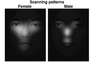 scanning pattern