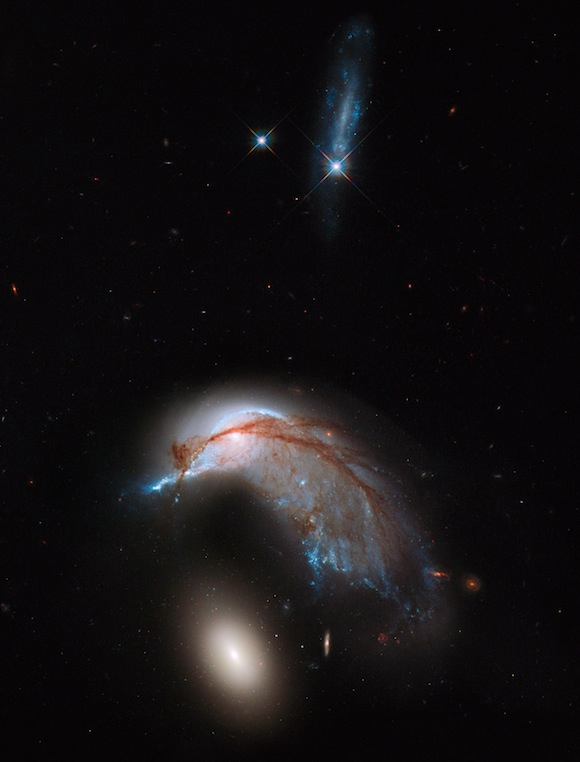 This image shows the two galaxies interacting. NGC 2936, once a standard spiral galaxy, and NGC 2937, a smaller elliptical, bear a striking resemblance to a penguin guarding its egg. This image is a combination of visible and infrared light, created from data gathered by the NASA/ESA Hubble Space Telescope Wide Field Planetary Camera 3 (WFC3).