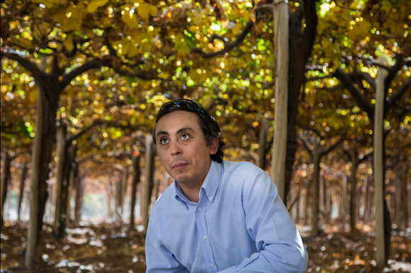 Bruno Espinoza Moran is the general manager of the Fundo El Algarrobal vineyard