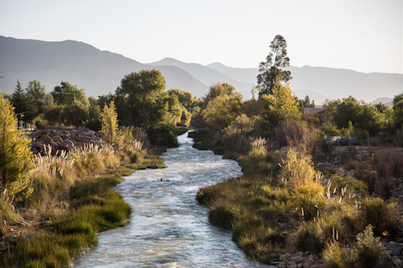 The Elqui River Valley is in Coquimbo, Chile's most mountainous region.