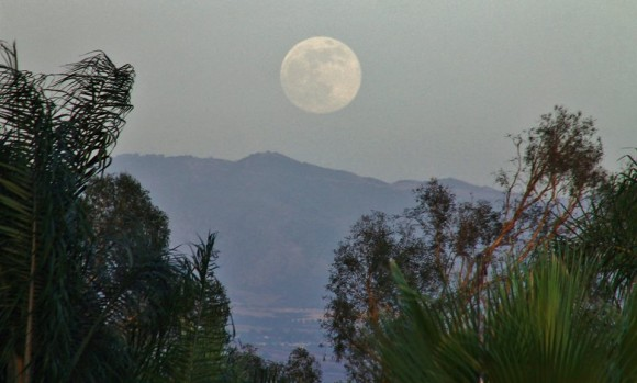 Tonights Super Moon rising over Highland Ca. 6/22/13 Photo credit: Lyle Evans