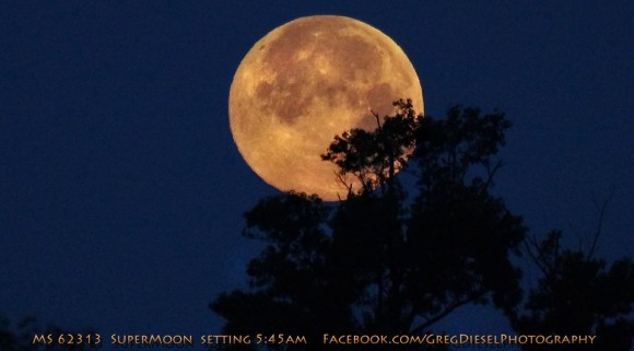 As close and big as it will get for the east coast of the US - 545am moon sets in coastal North Carolina. Photo credit: Greg Diesel.